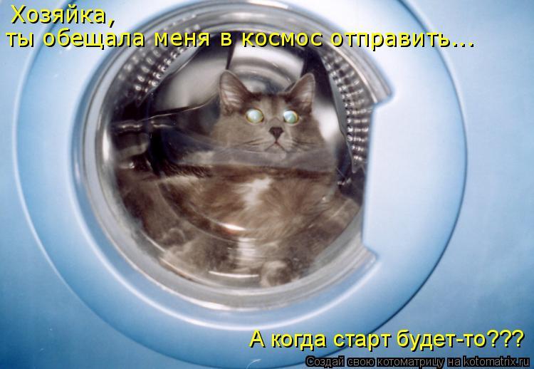 Котоматрица: ты обещала меня в космос отправить... Хозяйка,  А когда старт будет-то???