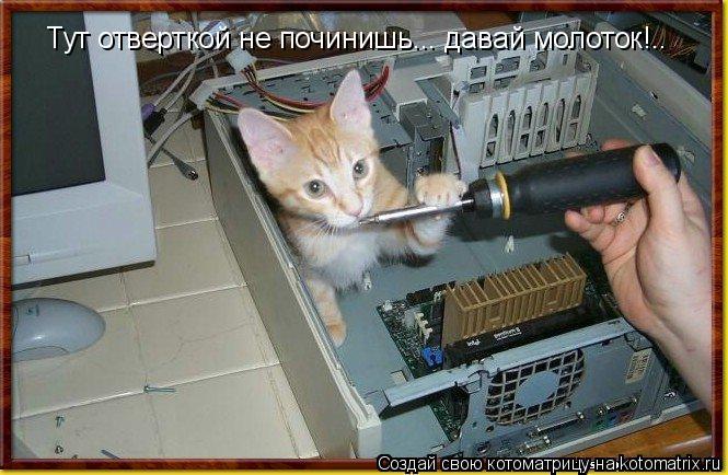 Котоматрица: Тут отверткой не починишь... давай молоток!..