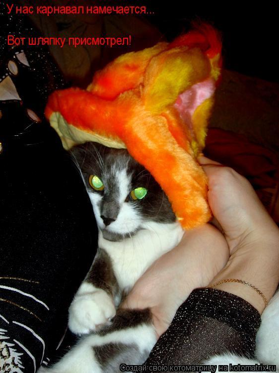 Котоматрица: Вот шляпку присмотрел! У нас карнавал намечается...