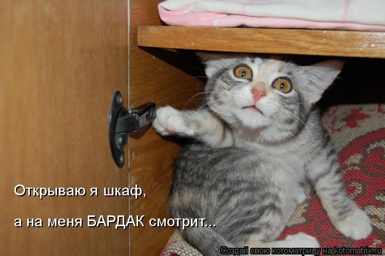 Котоматрица: Откpываю я шкаф,  а на меня БАРДАК смотpит...