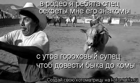Котоматрица: в родео я ребята спец секреты мне его знакомы чтоб довести быка до комы с утра гороховый супец