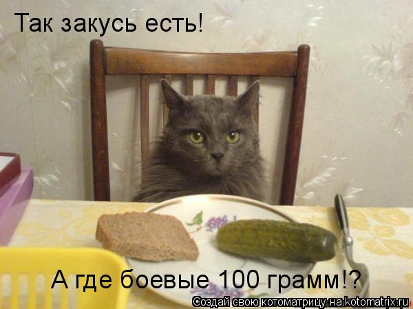 Котоматрица: Так закусь есть! А где боевые 100 грамм!?