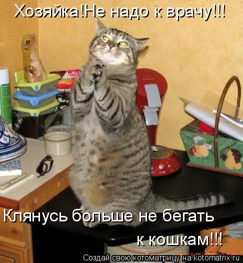 Котоматрица: Хозяйка!Не надо к врачу!!! Клянусь больше не бегать к кошкам!!!