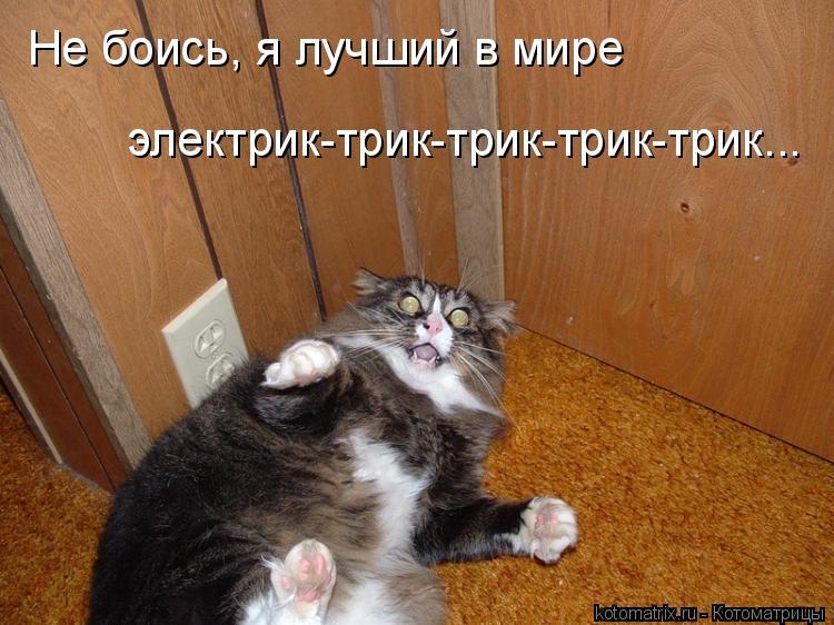 Котоматрица: Не боись, я лучший в мире  электрик-трик-трик-трик-трик...