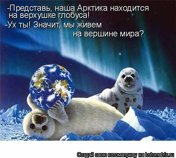 Котоматрица: -Представь, наша Арктика находится  на верхушке глобуса!  -Ух ты! Значит, мы живем  на вершине мира?