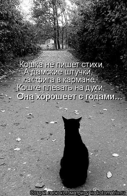 Котоматрица: Кошка не пишет стихи,  А дамские штучки, как фига в кармане. Кошке плевать на духи,   Она хорошеет с годами...