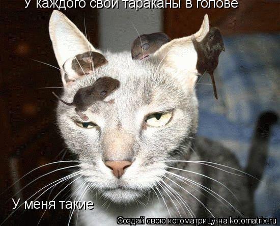 Котоматрица: У каждого свои тараканы в голове У меня такие