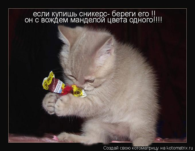 Котоматрица: если купишь сникерс- береги его !! он с вождем манделой цвета одного!!!!