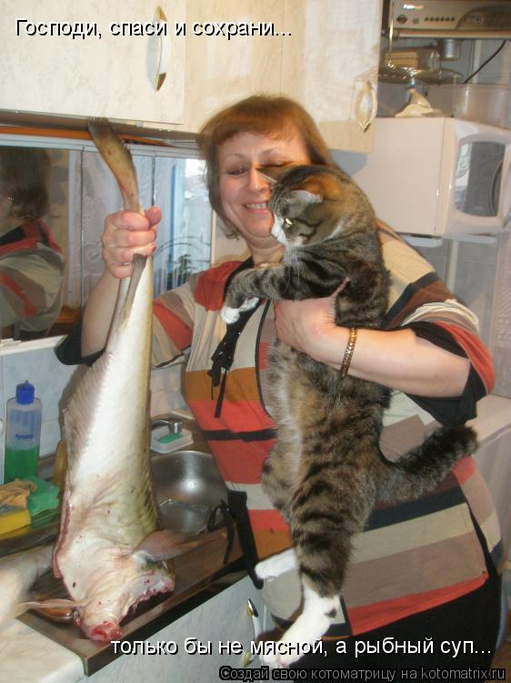Котоматрица: Господи, спаси и сохрани... только бы не мясной, а рыбный суп...