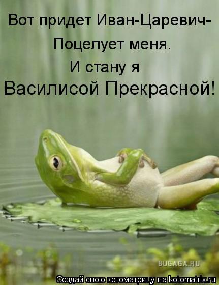 Котоматрица: Вот придет Иван-Царевич- Поцелует меня. И стану я  Василисой Прекрасной!