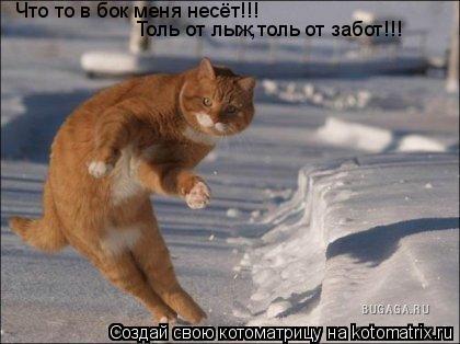 Котоматрица: Что то в бок меня несёт!!! Толь от лыж,толь от забот!!!