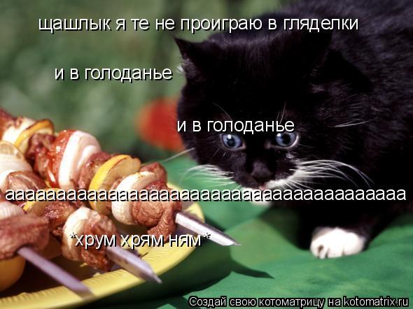 Котоматрица: щашлык я те не проиграю в гляделки и в голоданье и в голоданье ааааааааааааааааааааааааааааааааааааааа *хрум хрям ням*