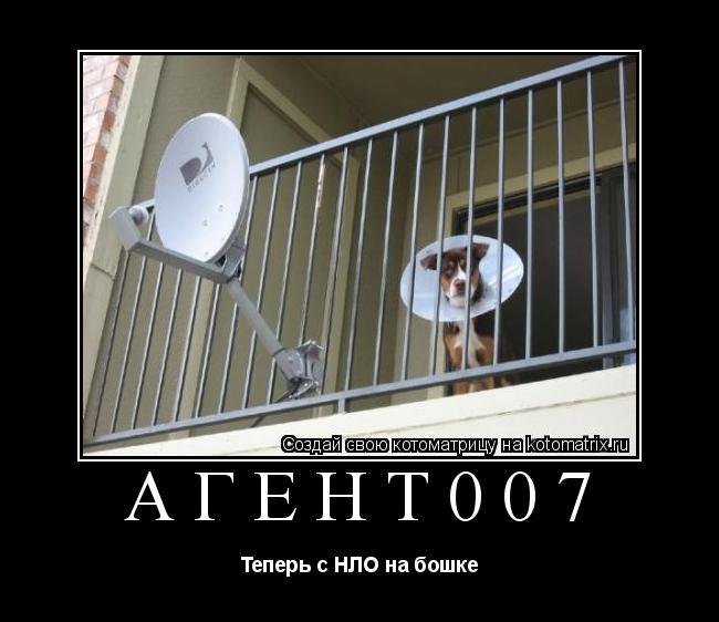Котоматрица: агент007 Теперь с НЛО на бошке