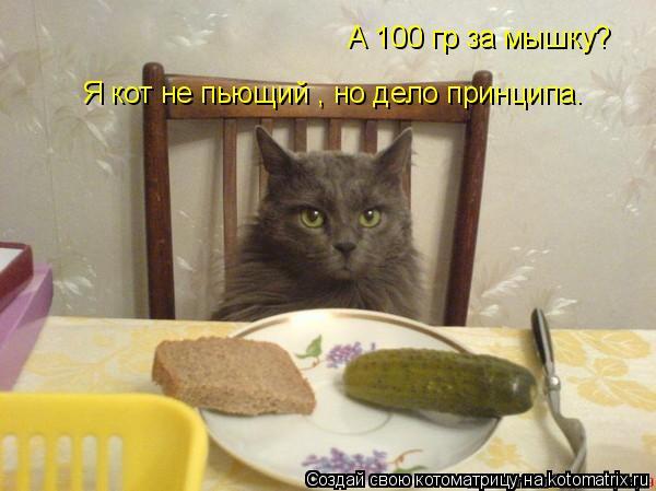 Котоматрица: А 100 гр за мышку? Я кот не пьющий , но дело принципа.