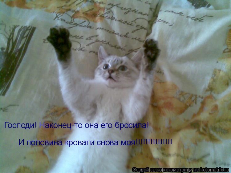Котоматрица: Господи! Наконец-то она его бросила! И половина кровати снова моя!!!!!!!!!!!!!!!