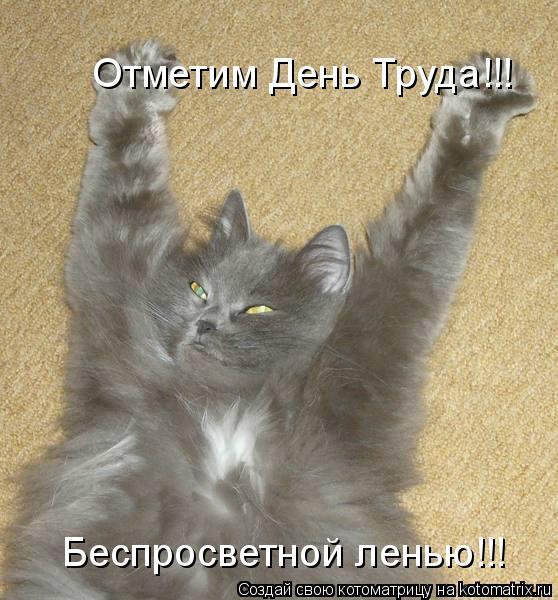 Котоматрица: Отметим День Труда!!! Беспросветной ленью!!!
