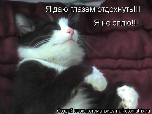 Котоматрица: Я не сплю!!!  Я даю глазам отдохнуть!!!