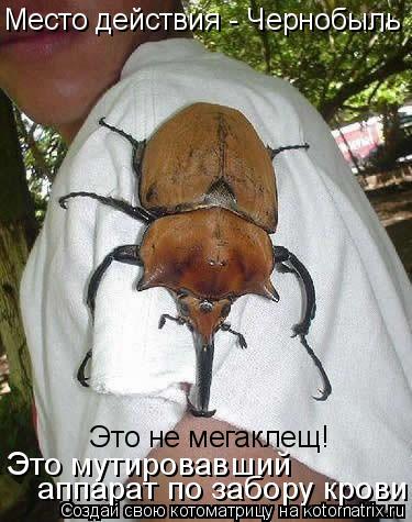 Котоматрица: Место действия - Чернобыль Это не мегаклещ! Это мутировавший  аппарат по забору крови