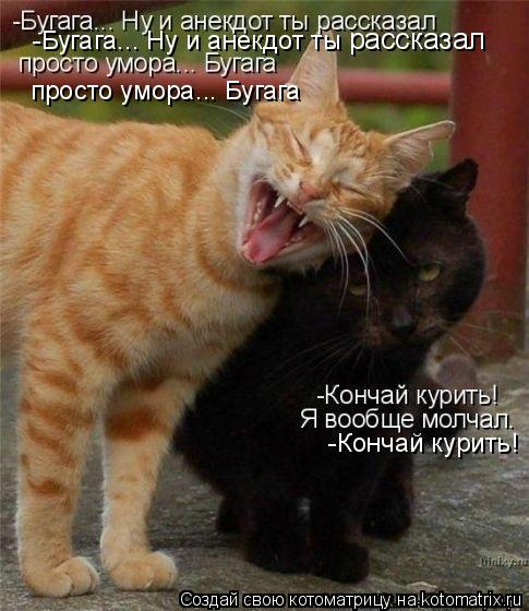 Котоматрица: -Бугага... Ну и анекдот ты рассказал  рассказал  просто умора... Бугага -Кончай курить!