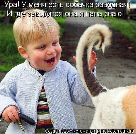 Котоматрица: -Ура! У меня есть собачка заводная! И где заводится она я,папа,знаю!