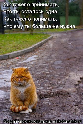 Котоматрица: Как тяжело принимать,   Что ты осталось одна...  Как тяжело понимать, Что ему ты больше не нужна…