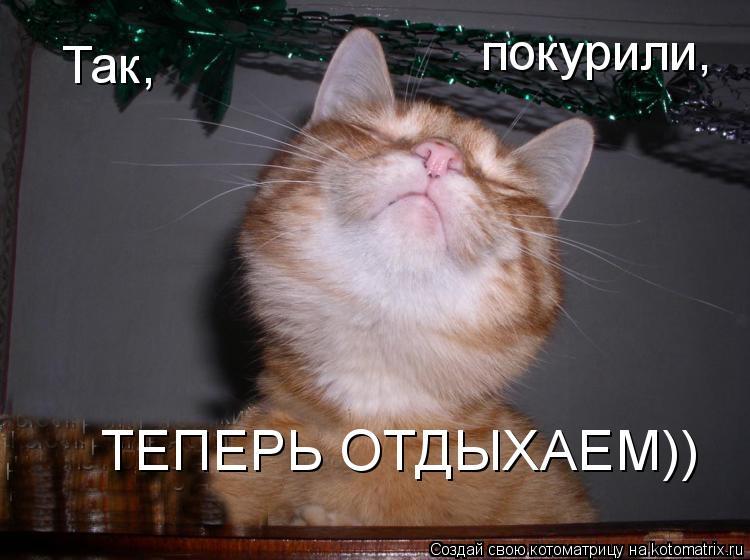 Котоматрица: Так, покурили, ТЕПЕРЬ ОТДЫХАЕМ))