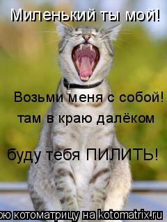 Котоматрица: Миленький ты мой! Возьми меня с собой! там в краю далёком буду тебя ПИЛИТЬ!