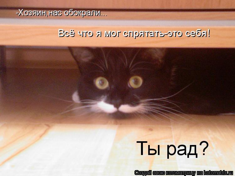 Котоматрица: -Хозяин,нас обокрали... Всё что я мог спрятать-это себя! Ты рад?