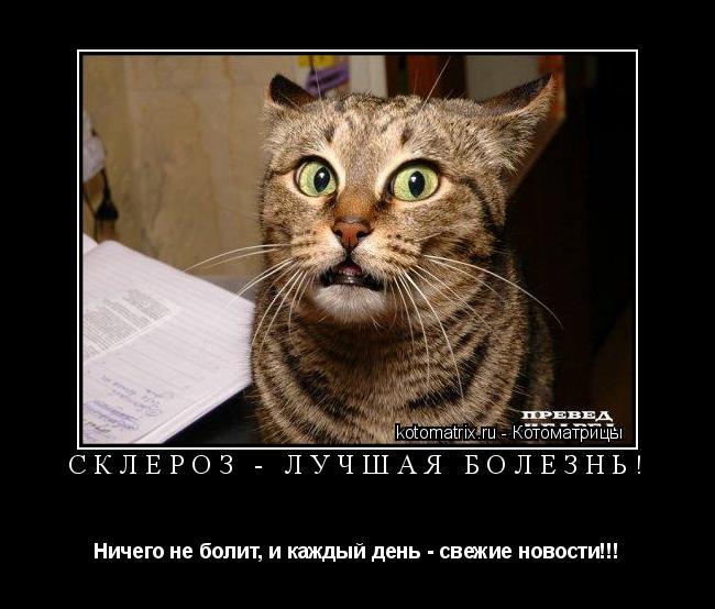 Котоматрица: СКЛЕРОЗ - ЛУЧШАЯ БОЛЕЗНЬ! Ничего не болит, и каждый день - свежие новости!!!
