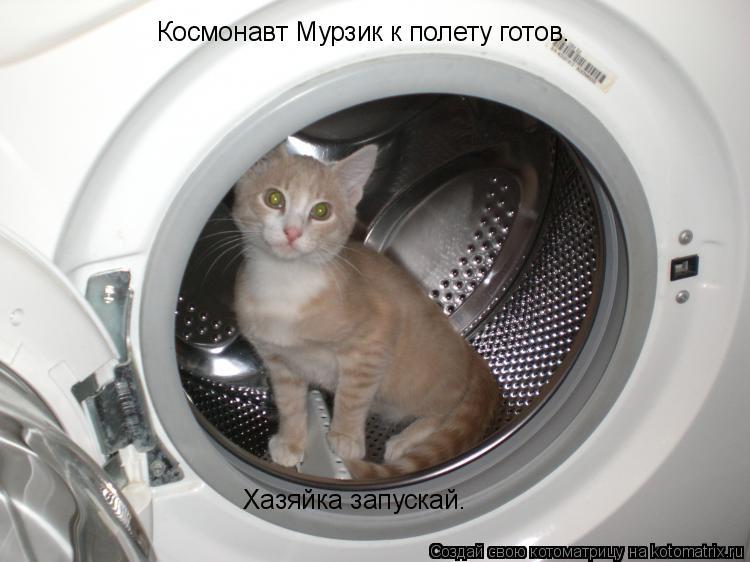 Котоматрица: Космонавт Мурзик к полету готов. Хазяйка запускай.