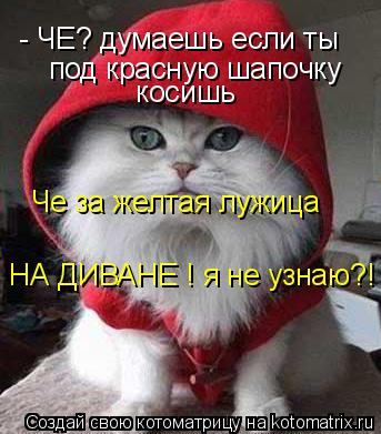 Котоматрица: - ЧЕ? думаешь если ты   под красную шапочку   косишь Че за желтая лужица  НА ДИВАНЕ ! я не узнаю?!