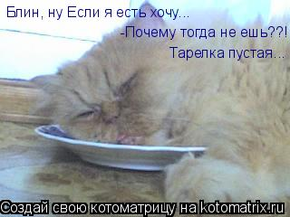 Котоматрица: Блин, ну Если я есть хочу... Блин, ну Если я есть хочу... -Почему тогда не ешь??! -Почему тогда не ешь??! Тарелка пустая...