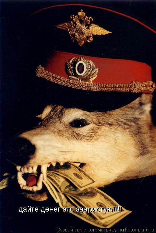 Котоматрица: дайте денег ато зааристую!!!!