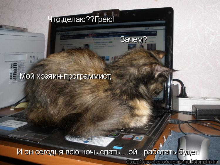 Котоматрица: Что делаю??Грею! Зачем? Мой хозяин-программист, И он сегодня всю ночь спать....ой...работать будет.