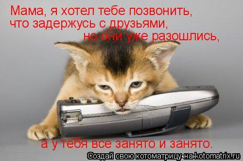 Котоматрица: Мама, я хотел тебе позвонить, что задержусь с друзьями,  но они уже разошлись, а у тебя все занято и занято.