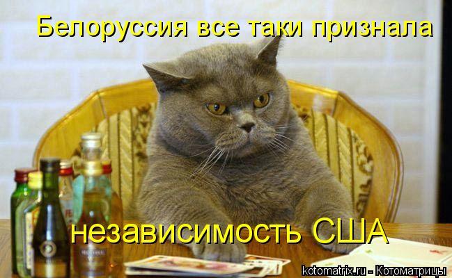 Котоматрица: Белоруссия все таки признала независимость США