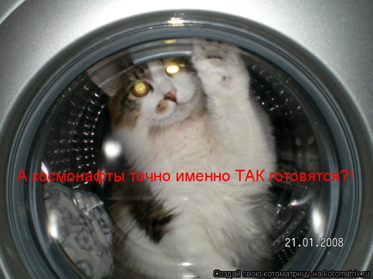 Котоматрица: А космонафты точно именно ТАК готовятся?!