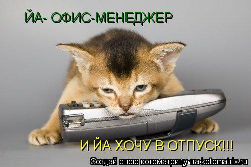 Котоматрица: ЙА- ОФИС-МЕНЕДЖЕР И ЙА ХОЧУ В ОТПУСК!!!