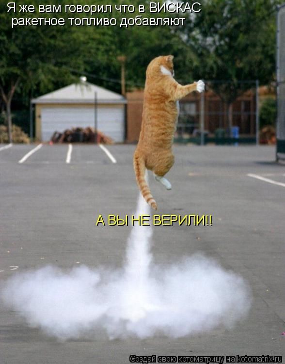 Котоматрица: Я же вам говорил что в ВИСКАС ракетное топливо добавляют А ВЫ НЕ ВЕРИЛИ!!