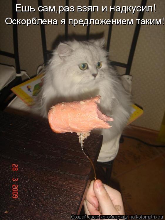Котоматрица: Ешь сам,раз взял и надкусил! Оскорблена я предложением таким!