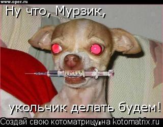 Котоматрица: Ну что, Мурзик,  укольчик делать будем!