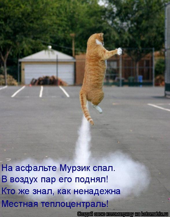 Котоматрица: На асфальте Мурзик спал.  В воздух пар его поднял! Кто же знал, как ненадежна Местная теплоцентраль!
