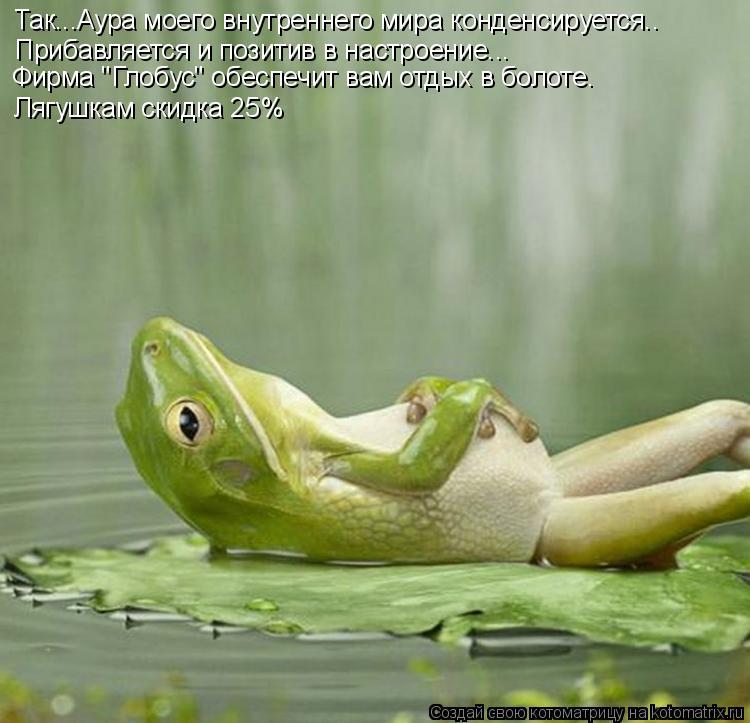 """Котоматрица: Так...Аура моего внутреннего мира конденсируется.. Прибавляется и позитив в настроение... Фирма """"Глобус"""" обеспечит вам отдых в болоте. Лягушк"""