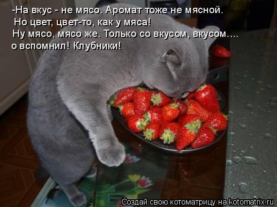 Котоматрица: -На вкус - не мясо. Аромат тоже не мясной. Но цвет, цвет-то, как у мяса! Ну мясо, мясо же. Только со вкусом, вкусом....  о вспомнил! Клубники!