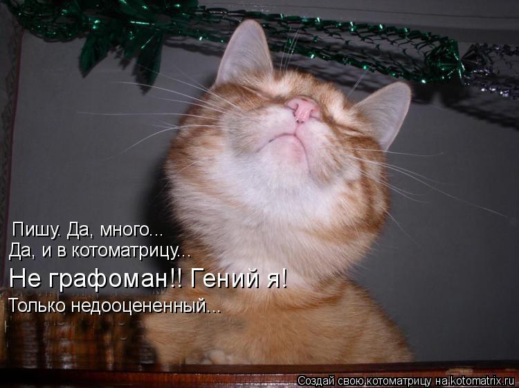 Котоматрица: Пишу. Да, много... Да, и в котоматрицу... Не графоман!! Гений я! Только недооцененный...