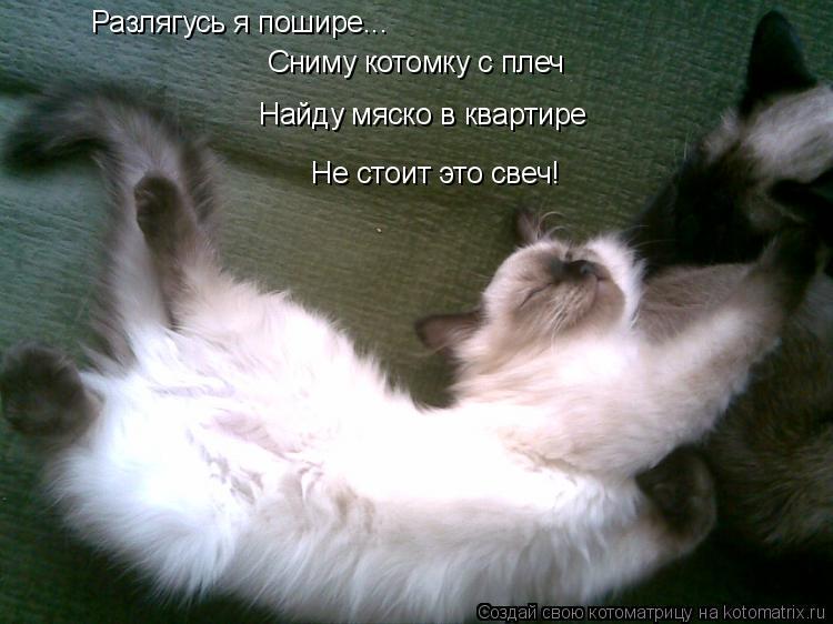 Котоматрица: Разлягусь я пошире... Сниму котомку с плеч Найду мяско в квартире Не стоит это свеч!