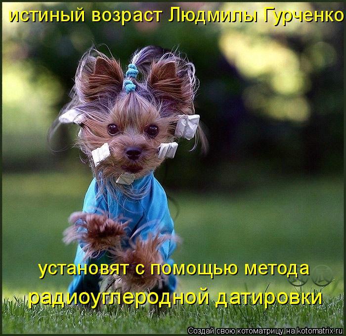 Котоматрица: истиный возраст Людмилы Гурченко установят с помощью метода радиоуглеродной датировки