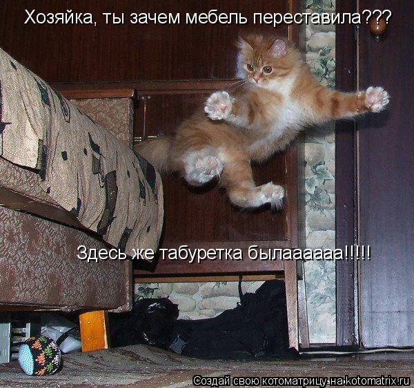 Котоматрица: Хозяйка, ты зачем мебель переставила??? Здесь же табуретка былаааааа!!!!!