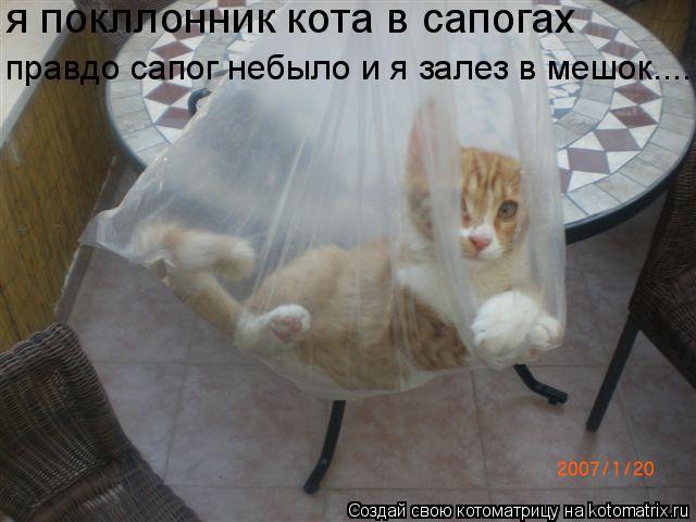 Котоматрица: я покллонник кота в сапогах правдо сапог небыло и я залез в мешок....