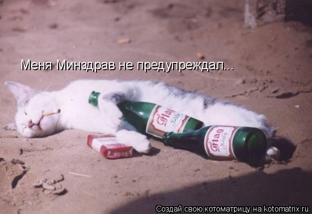 Котоматрица: Меня Минздрав не предупреждал...